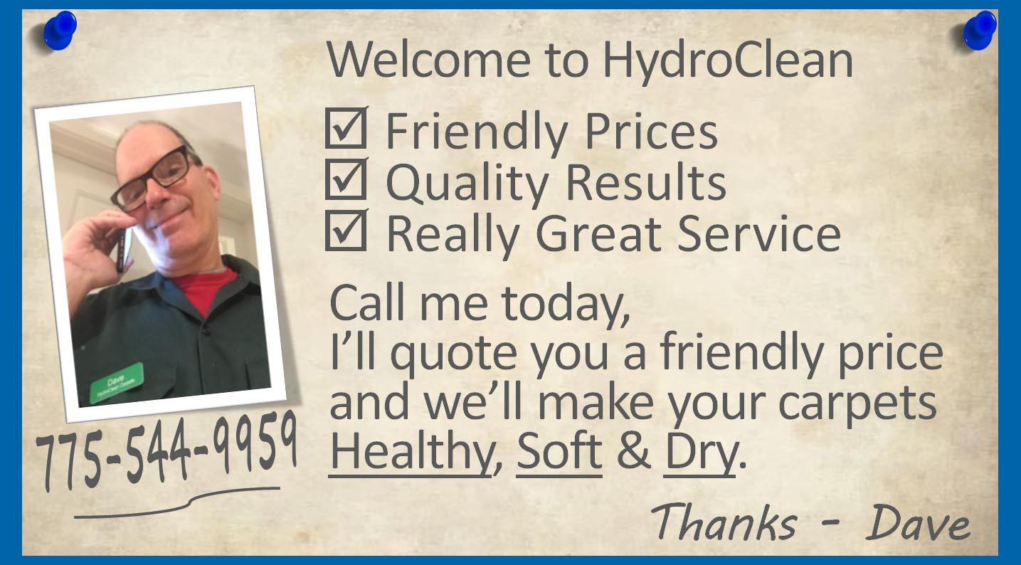 Your Carpets Healthy Clean Soft And Dry. Schedule Today or Book Online