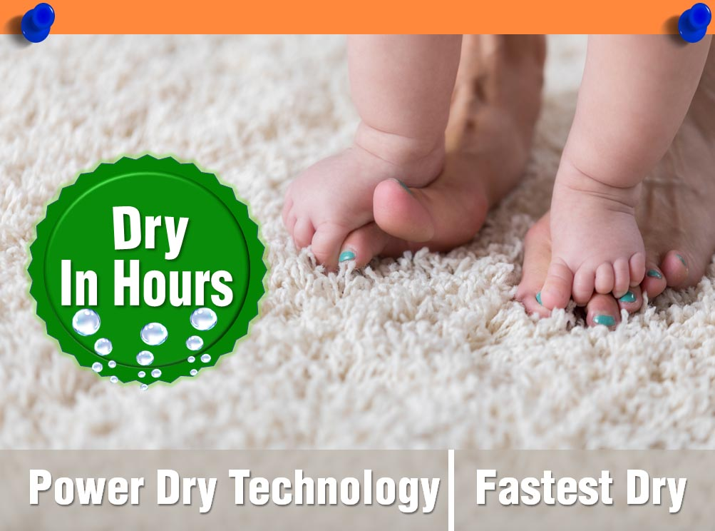 Power Dry Carpet Cleaning