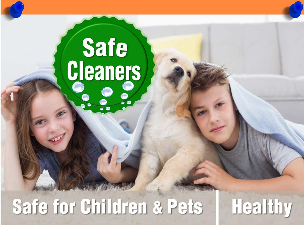 Healthy and Safe Carpet Cleaning.