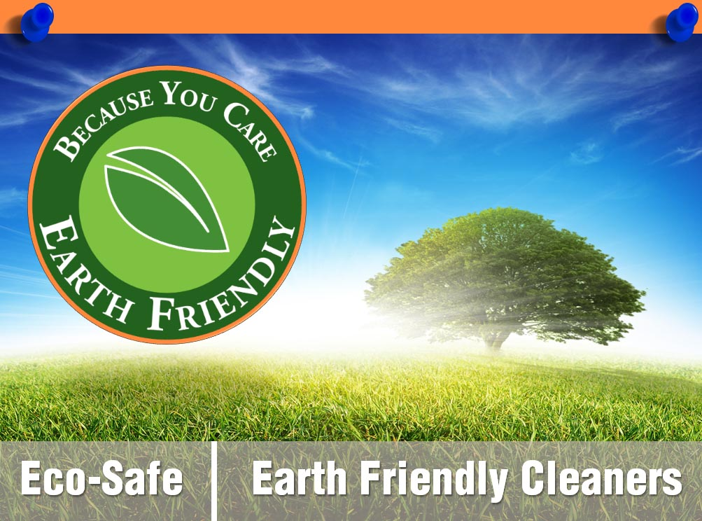Earth safe carpet cleaning