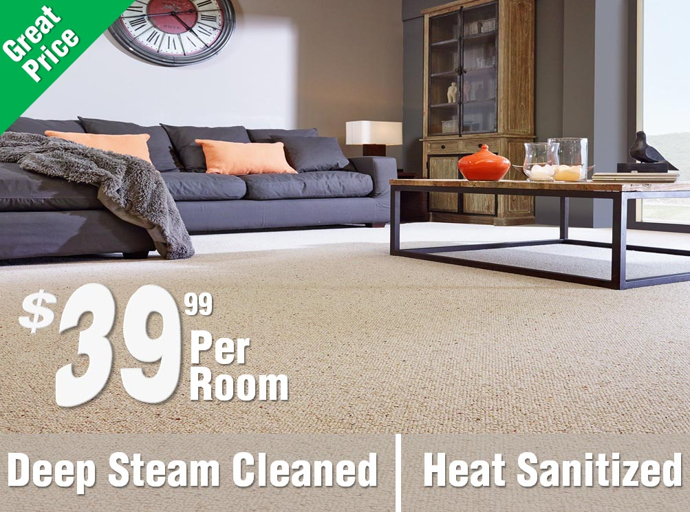 hydroclean carpets residential commercial carpet cleaning reno rh hydrocleancarpets com