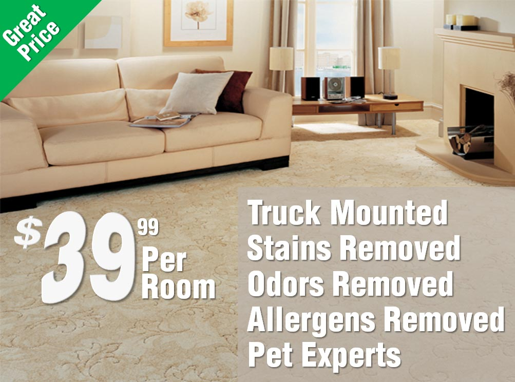 Pet Stain and Odor Experts